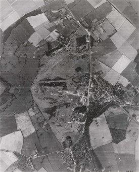 Photo:Aerial veiw of the Common in 1946 with few trees