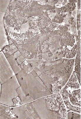 Photo:1961 aerial view of the common - the trees are encroaching